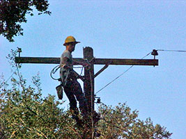 The Northeast Texas Power, Ltd. safe, skilled, and highly productive overhead line workforce are ready to serve your overhead construction and maintenance needs. Our employees are trained to safely perform all aspects of energized distribution work from 4kv to 34.5kv.